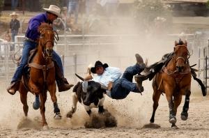 Steer-Wrestling