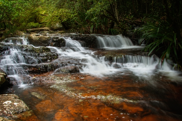 Springbrook-Stream