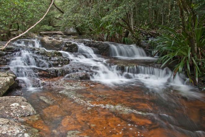 Springbrook-Stream-Original