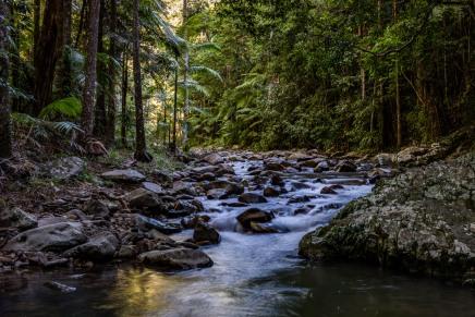 Currumbin Creek Mt.Cougal